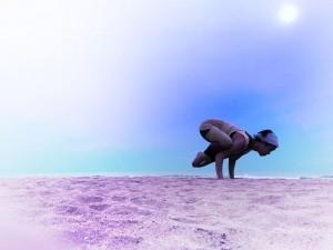 Hazel_crow@beach_color